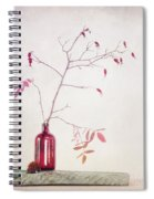 Wild Rosehips In A Bottle Spiral Notebook