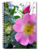Wild Roses 2 Spiral Notebook
