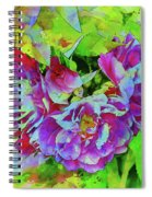 Wild Roses 3 Spiral Notebook