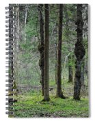 Wild Spring Forest Spiral Notebook