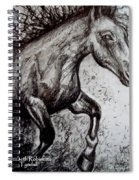 Wild Stallion Spiral Notebook