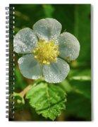 Wild Strawberry Flower Spiral Notebook