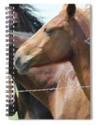 Wild Thang Spiral Notebook