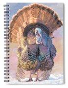 Wild Tom Turkey Spiral Notebook