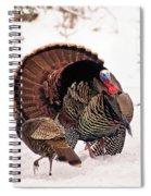 Wild Turkey Parade Print Spiral Notebook