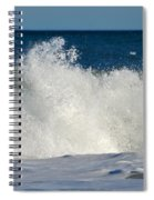 Wild Waves Spiral Notebook