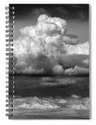 Wild Weather Spiral Notebook