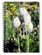 Wild White Puffs Spiral Notebook
