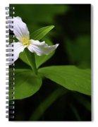Wild White Trillium Spiral Notebook