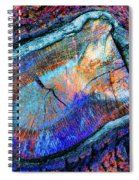 Wild Wood II Spiral Notebook