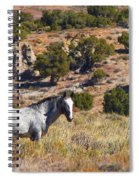 Wild Wyoming Spiral Notebook