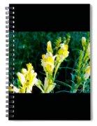 Wild Yellow Flowers Spiral Notebook