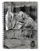Wildcat - Impressions Spiral Notebook
