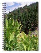 Wilderness Expedition Spiral Notebook