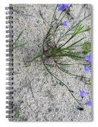 Wilderness Spiral Notebook