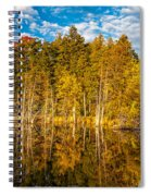 Wilderness Pond 3 Spiral Notebook