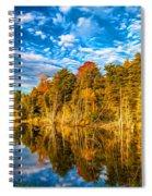Wilderness Pond - Paint Spiral Notebook