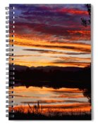 Wildfire Sunset 1v  Spiral Notebook