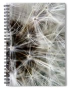Wildflower 1 Spiral Notebook