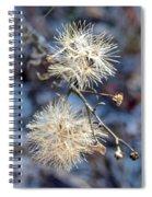 Wildflower Spiral Notebook