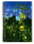 Wildflower Field Spiral Notebook