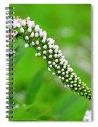 Wildflower Slide Spiral Notebook