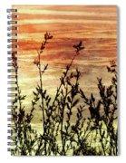 Wildflower Sunrise Spiral Notebook