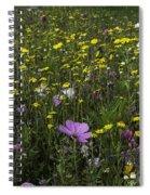 Wildflower Surprise Spiral Notebook