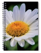 Wildflower  V9 Spiral Notebook