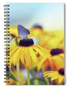 Wildflower Visitor Spiral Notebook