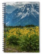 Wildflowers And Mount Moran Spiral Notebook