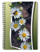 Wildflowers And Visitor Spiral Notebook