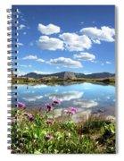 Wildflowers At A Tarn In Valecito Basin - Weminuche Wilderness - Colorado Spiral Notebook