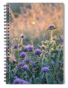 Wildflowers At Sunrise Spiral Notebook