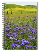 Wildflowers Carrizo Plain National Monument Spiral Notebook