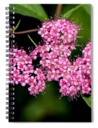 Wildflowers Come In Many Sizes Spiral Notebook