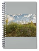 Wildflowers Of Chaco Spiral Notebook