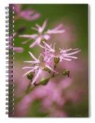 Wildflowers - Ragged Robin Spiral Notebook