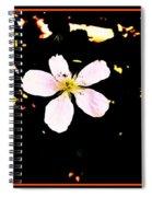 Wildly Beautiful Spiral Notebook