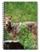 Wiley Coyote Spiral Notebook