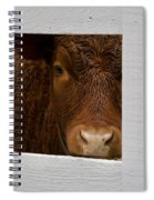 Williamsburg Calf Spiral Notebook