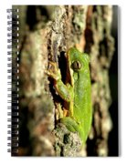 Willing Subject Spiral Notebook