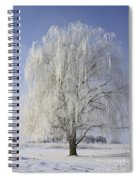 Willow In Ice Spiral Notebook