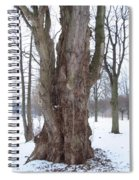 Willow Over Pond Spiral Notebook