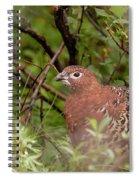 Willow Ptarmigan Spiral Notebook