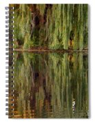 Willow Reflection Spiral Notebook