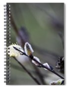 Willow Stages Spiral Notebook
