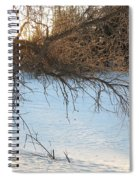 Willow Tree At Sunrise Spiral Notebook