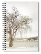 Willow Tree In Winter Spiral Notebook