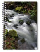 Wilson Creek #15 Spiral Notebook